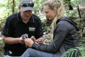 An update on the kohanga kiwi project